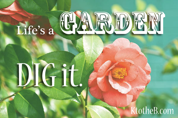 life is like a garden - Lifes A Garden Dig It