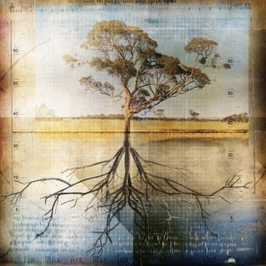 John Friend - The Roots